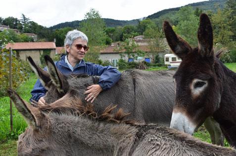 Médiation animale chez Éveil-Ânes à Verdalle, balade à dos d'ânes en Montagne Noire