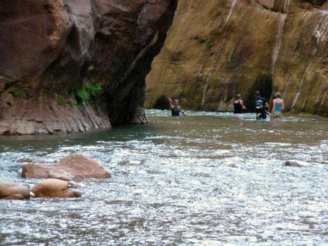 Wasserwanderung durch die Narrows 2011