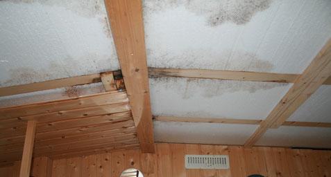 An der Deckenkonstruktion fehlte eine Dampfsperre