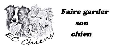 ec-chiens votre educateur comportementaliste canin vous explique comment faire garder son chien, le mettre dans une pension pour chien ou faire garder son chien par un pet sitter et rappel qu'est ce qu'un pet sitter