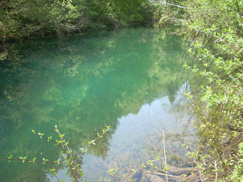"""Die sogenannte """"Struga"""", die im Bereich Mellacher Gailbrücke in die Gail einmündet"""