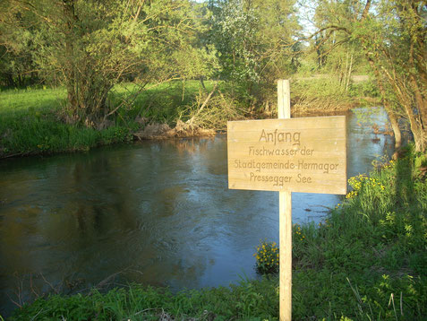 Revierbeginn im Westen des Lauenbaches (Stablacher Brücke)