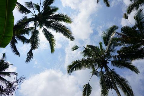Belize Urlaub