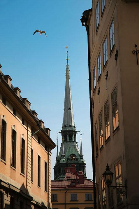 Фото Василия Шишкина. Путешествие в Стокгольм