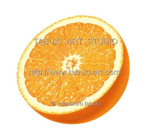 オレンジ半切 RD_10504