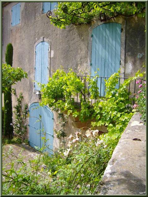 Maison verdoyante aux volets bleus, village d'Eygalières dans les Alpilles, Bouches du Rhône