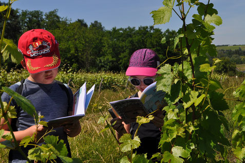 family-guided-tour-walk-wine-tasting-Vouvray-vineyard-children-family-activity-Loire-Valley-AMboise-Tours-wine-tours- Myriam-Fouasse-Robert