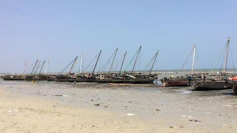 Fischerboote im Hafen von Bagamoyo