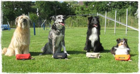 Hundefamilie von Kathrin B. jeder hat seinen eigenen Beutel