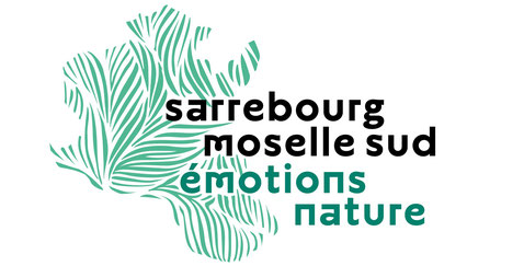 Sarrebourg moselle sud émotion nature