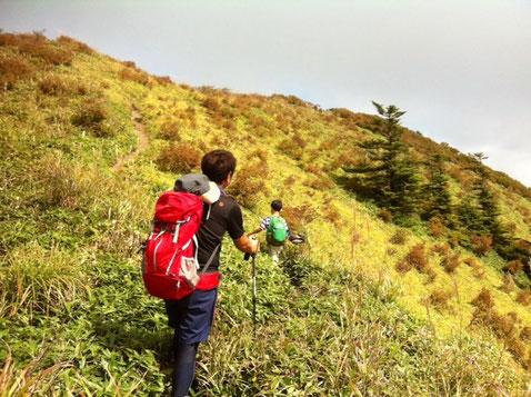山頂間近なんで先頭にたって急ぎ足。