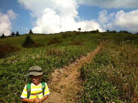 """矢筈山と言う山は四国に二つあります。 一つは徳島、もう一つは高知と徳島に跨っている感じの山で、。 高知の方は,""""土佐矢筈山""""が正式名称ですけどね。  で、昨日は徳島の矢筈山に行って来ました。(2回目) 写真のところが登山口ですが、見ての通り気持ちのいいスタートが切れる登山口。空に真っ直ぐ伸びてて良い感じ。   *こんなに開けた登山口は、そんなに無いんですよ。"""