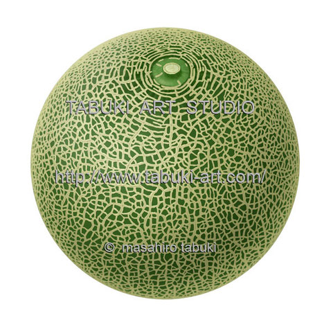 アンデスメロン melon  fruit フルーツ 果物イラスト 食品イラスト シズル