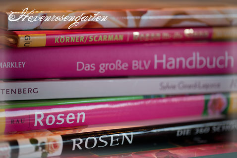 Rosen Rosenblog Hexenrosengarten Planungen Rosenbücher