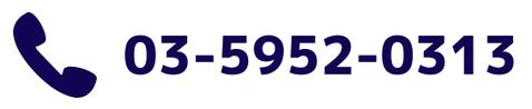 0359520313