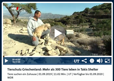 Tiere suchen ein Zuhause (WDR) vom 01.09.2019