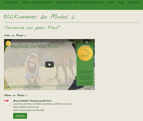 Online-Kurs Umgang und Verbindung mit dem Pferd
