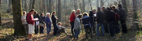 sorties, nature, tarn, association, naturaliste, environnement