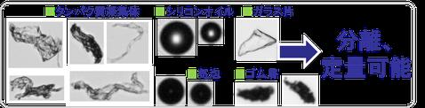 画像解析 粒度分布