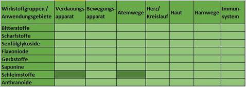 Heilpflanze Eibisch Altaea Marshmallow Schleimstoffe Schleimhäute schleimhautschützend Verdauungstrakt Atemwege Rachenraum Kehlkopf trockener Reizhusten