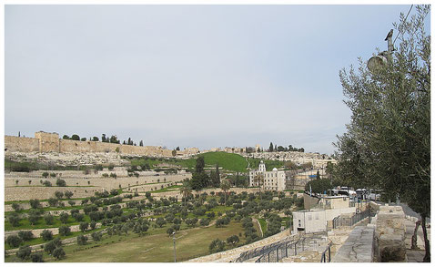 Kidron Valley and St. Steven's monastery