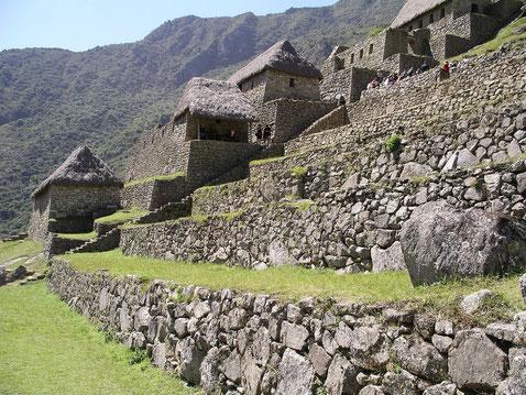Touren nach Machu Picchu von Cusco oder Ollantaytambo mit PERUline