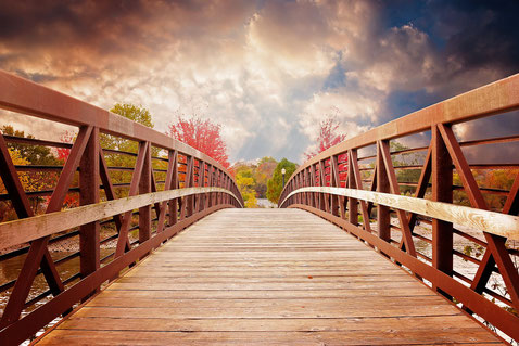 Entschlossen Brücken der Nachhaltigkeit bauen