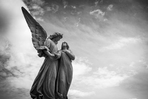 La haut, un ange veille sur vous. L'avez-vous déjà rencontré?