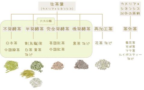 お茶の分類