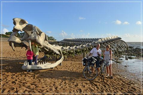 La Loire à Vélo, Serpent d'Océan, oeuvre de l'artiste Huang Yong Ping, pointe du Nez de chien, Saint Brevin les Pins, dep44, Pays de La Loire - © J. Damase