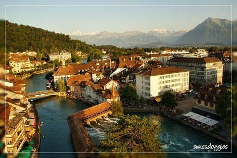 Aussicht vom Riesenrad hinunter auf die Aare (Fluss), die Stadt Thun und die Berner Alpen (rechts der Niesen).