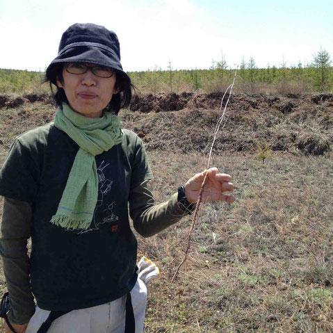 杏の苗を手にするDRYandPEACE 田平