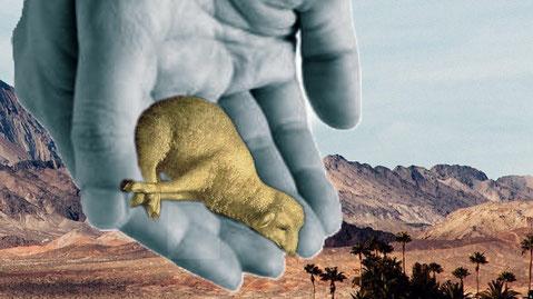 """Gods offer - """"Zie het lam van Goddat de zonde van de wereld wegneemt."""""""