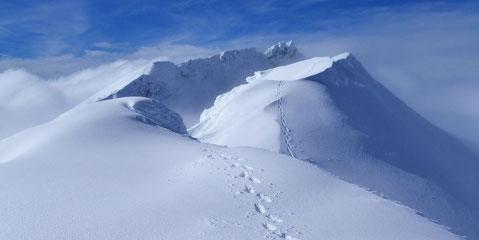 Trittspur über Berggipfel unter Schnee