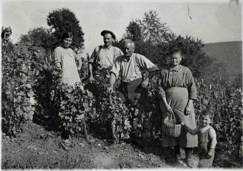 "Familie Walde ""Sunnewirts"" im Rebberg (Herbst 1930). Vlnr.: Berta (Baldesberger-) Walde; Ferdinand Ricklin-Walde; Josef Walde-Schmid; Berta Walde-Schmid; Ferdi Ricklin jun."