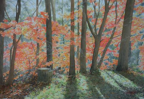 雨はあがり風は去る 2020年
