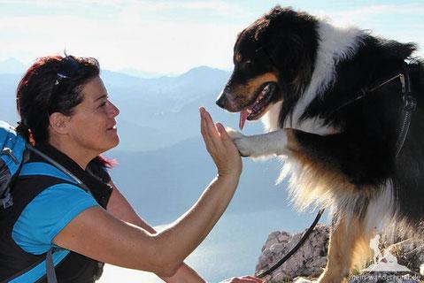 Ausflugsziele mit Hund, Wandern mit Hund; mein Wanderhund Ari; Andrea Obele
