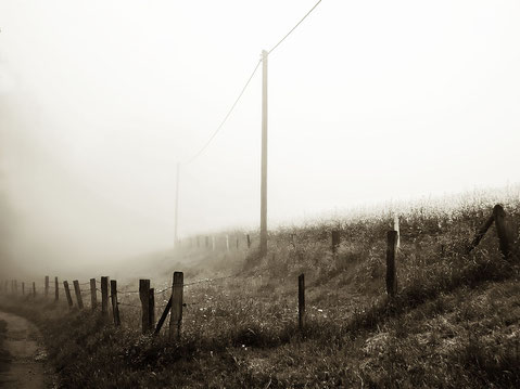 Nebel Raps