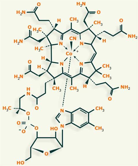 vitamina b12 estructura