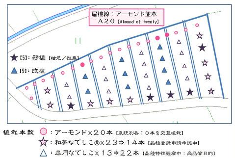 扁桃線【A20】園地レイアウト2017 和×夢 nagomu farm