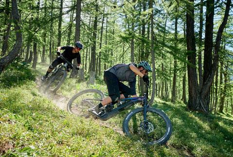 Zwei Männer auf dem neuen Trail e-MTB von Giant
