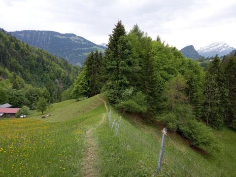 Der Scaminieras-Trail macht mächtig Spass!