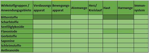 Heilpflanze Löwenzahn Taraxacum Bitterstoffe Flavonoide Verdauungssäfte Gallenfluss Nierentätigkeit Entwässerung Entgiftung Rheuma