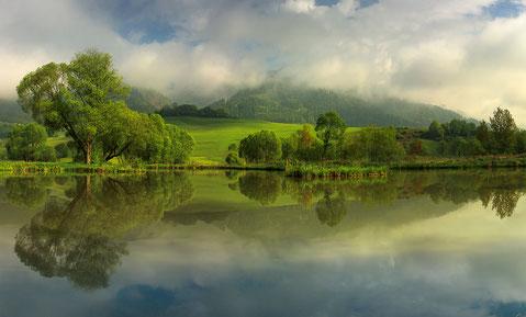 Erster Platz Rattenberger Teich