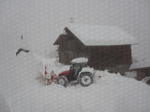 DANKE ,Schuster Franz, für´s Schneeschieben im Jänner 2014!