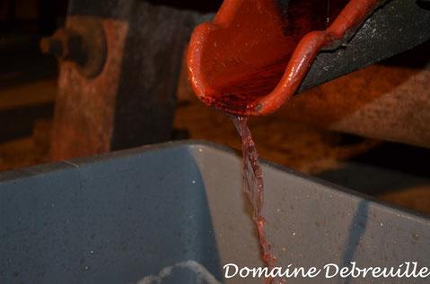 gamay, macon rose, plottes