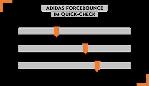 Adidas Forcebounce Handballschuhe