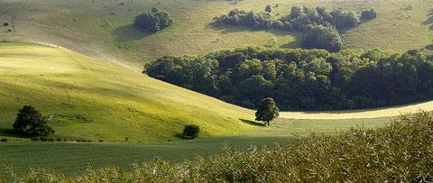 Sussex in UK - photo Flickr grimbo87