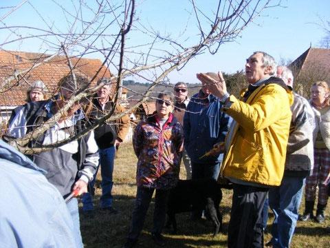 Atelier taille des arbres fruitiers