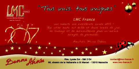 LMC France VOEUX force sante nouvelle année nouvel an 2017 leucemie myeloide chronique cancer